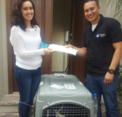 Trusted door to door pet relocation