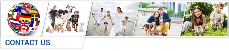 Pet transport, pet travel, pet shipping, pet relocation