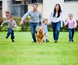 Family Pet Relocation