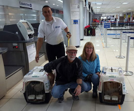 Moving dogs to Honduras, Bringing pets to Honduras, Bringing pets into Honduras, Honduras dog quarantine, Honduras pet quarantine, Taking pets to Honduras, Taking dogs to Honduras