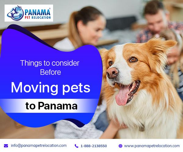 moving pets to Panama