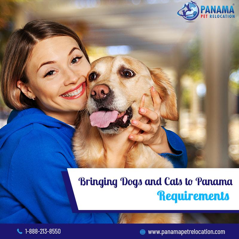 bringing pets into panama